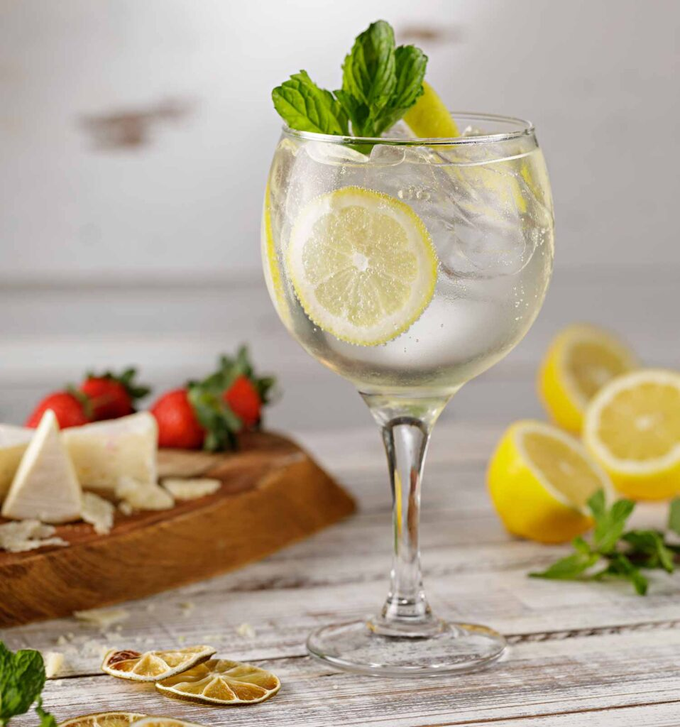 drinks gin tonica zona sul foto rodrigo azevedo