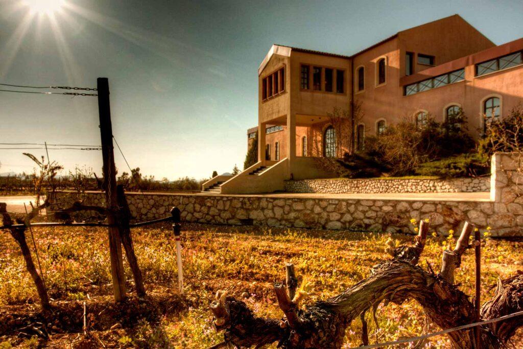 vinhos domaine skouras