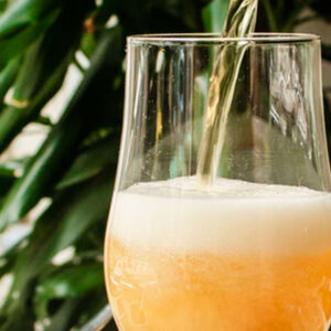 cerveja artesanal de verão zona sul